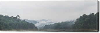 Panorama view of morning fog and dead trees in dense tropical rainforest, Perak, Malaysia Canvas Print