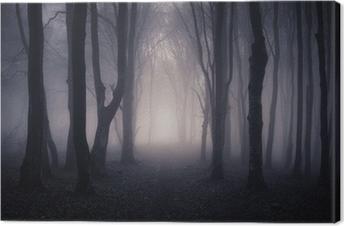 path through a dark forest at night Canvas Print