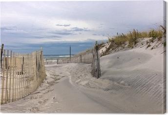 Path through sand dunes on a beach on Long Island, New York Canvas Print