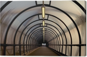 perspex tunnel walkway Canvas Print