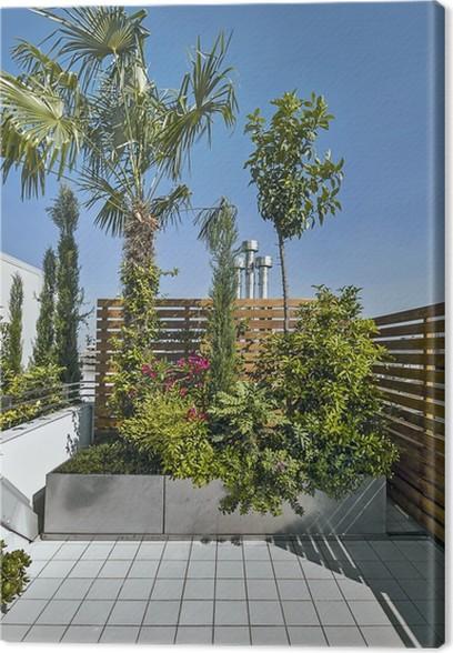 piante sul terrazzo moderno Canvas Print