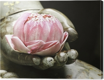 pink lotus in hand of buddha Canvas Print