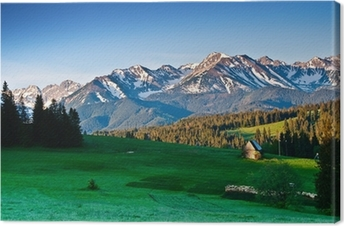 Polish Tatra mountains panoram in the morning Canvas Print