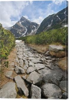 Polish Tatra mountains Canvas Print