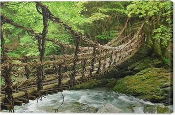 Pont de lianes et bambou Kazura-bashi à Oku Iya, Shikoku Canvas Print