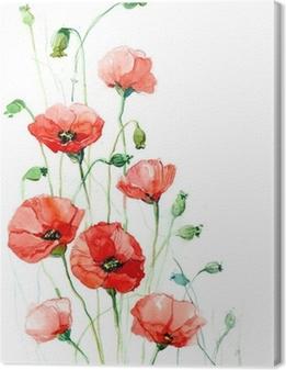 poppies (series C) Canvas Print