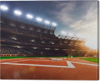 Professional baseball grand arena in sunlight Canvas Print