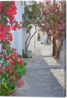 Quiet back street in small traditional greek village Canvas Print
