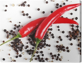 Red chilli pepper Canvas Print