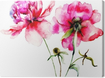 Red Peony flowers Canvas Print