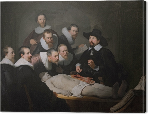 Rembrandt - The Anatomy Lesson od Dr Nicolaes Tulip Canvas Print - Reproductions