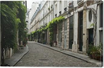 ruelle parisienne Canvas Print