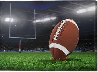 Rugby Ball On Grass in a Stadium Canvas Print