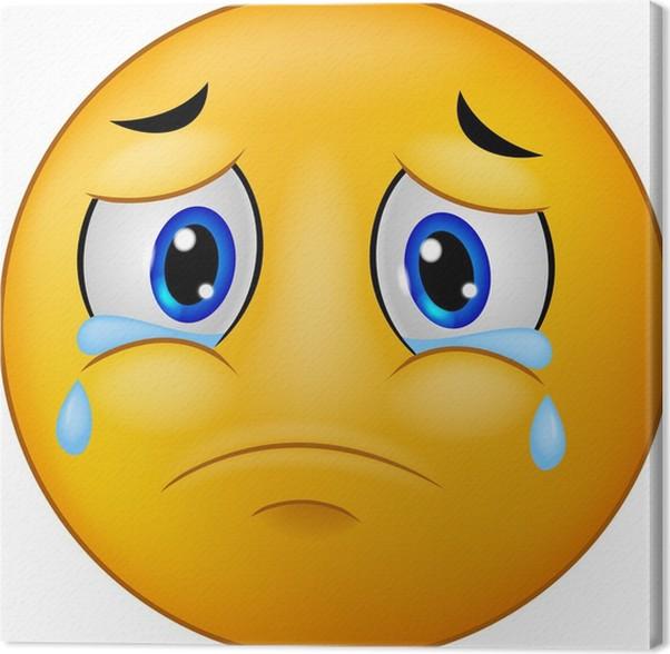 Sad Smiley Emoticon Canvas Print Pixers We Live To Change