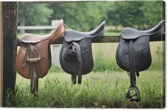 Saddles Canvas Print