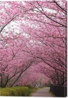 Sakura arch Canvas Print