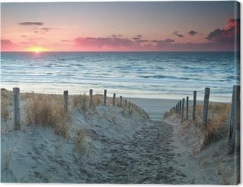 sand path to North sea beach before sunset Canvas Print