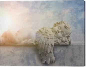 Schlafender Engel im Sonnenschein Canvas Print