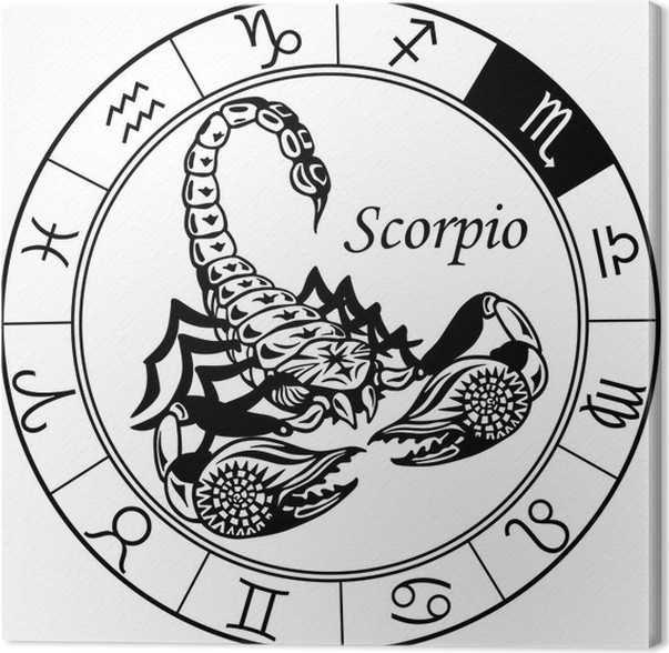 Scorpion zodiac black white canvas print other other