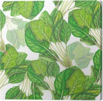 Seamless pattern of hand drawn spinach Canvas Print