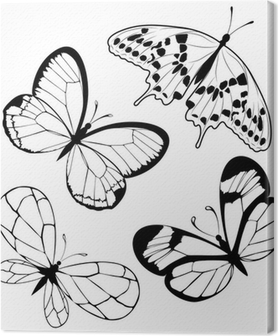 Collection Black And White Butterflies Tattoo Design Canvas Print