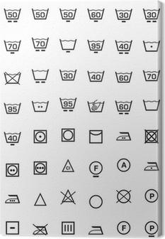 set icone lavaggio e lavatrice Canvas Print