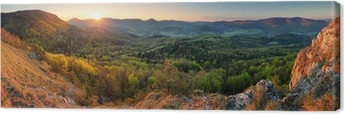 Slovakia spring forest panorama Canvas Print