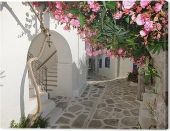 Small backstreet on Amorgos island, Greece Canvas Print