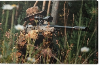 Sniper takes aim from a position. In the field of chamomile Canvas Print