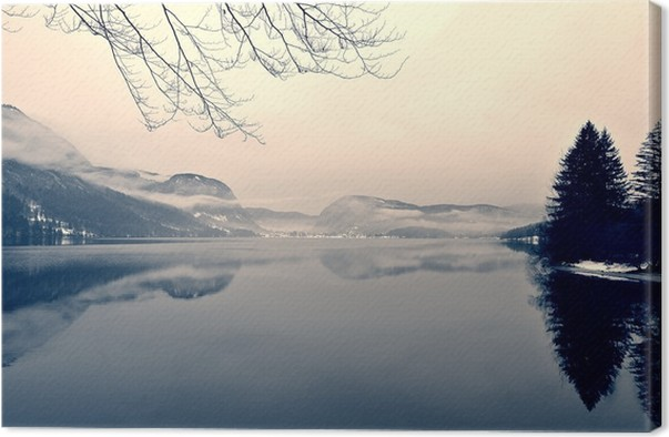 Snowy winter landscape on the lake in black and white monochrome image filtered in retro vintage style with soft focus red filter and some noise