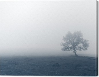 solitary tree with fog Canvas Print