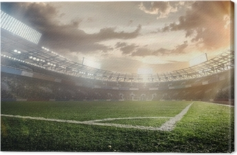 Sport Backgrounds. Soccer stadium. Canvas Print