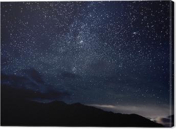 Star sky Canvas Print