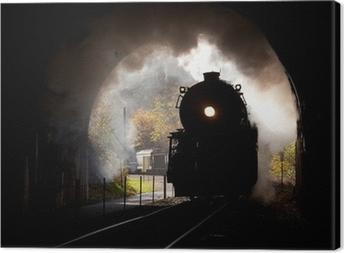 Steam locomotive enters tunnel Canvas Print
