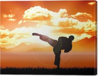 Stock illustration of Karate training Canvas Print