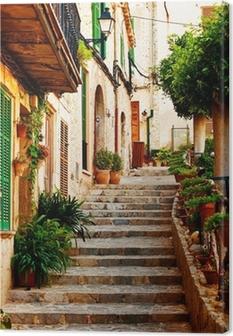 Street in Valldemossa village in Mallorca Canvas Print
