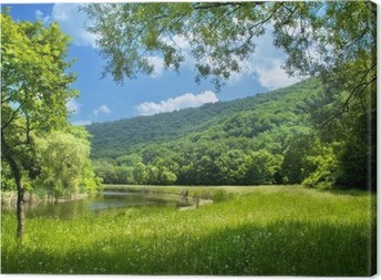 summer landscape with river and blue sky Canvas Print