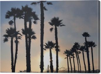 Sunset and palm trees, Santa Monica beach, Los Angeles, USA Canvas Print