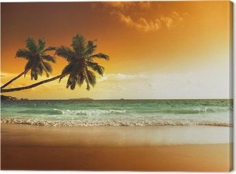 sunset on the beach of caribbean sea Canvas Print