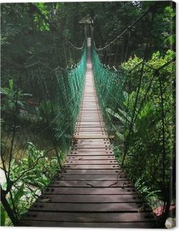 suspension bridge in the tropical jungle Canvas Print
