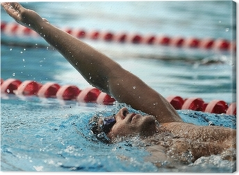 Swimming - sport Canvas Print