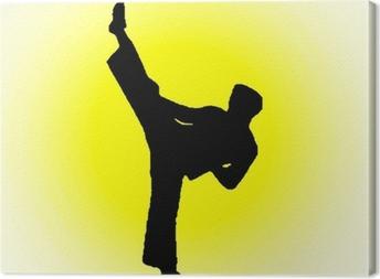 taekwondo fighter Canvas Print