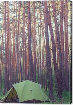Tent in the forest Canvas Print