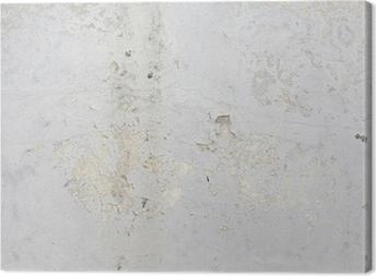 Texture concrete wall Canvas Print