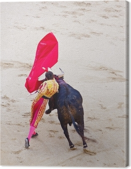 Traditional corrida - bullfighting in spain Canvas Print