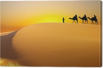 Travel with camel Canvas Print
