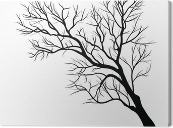 Trees with dead branch Canvas Print
