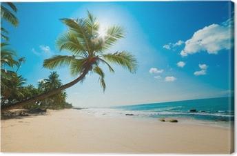 Tropical beach in the sun Canvas Print