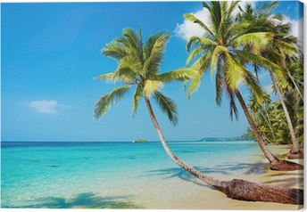 Tropical beach Canvas Print