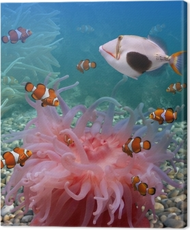 Tropical fishes Canvas Print
